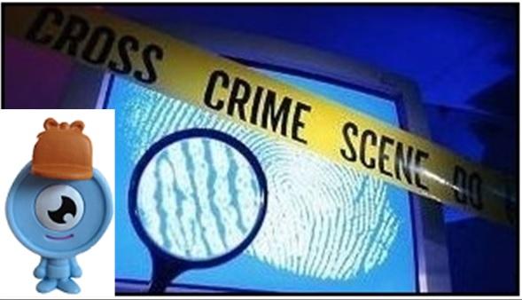 CSI Image 3