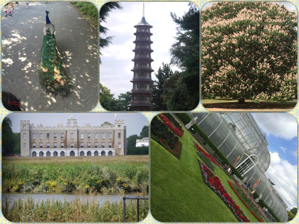 Kew Garden Scens