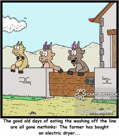 Photo Courtesy: CartoonStock