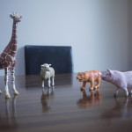 Educational Play the Schleich Way  – Review