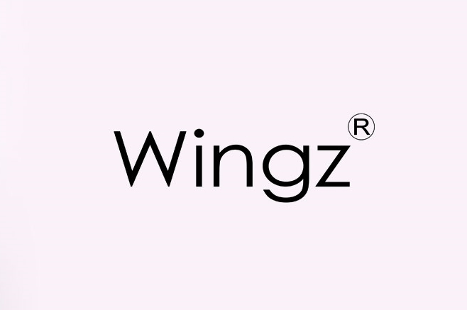 Wingz™ Fashion Arm Coverage – Give that sleeveless dress a different look